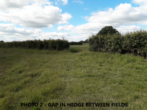the field track with the gap in the hedge