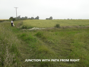 Photo of junction of path