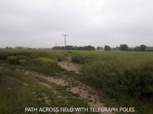 Photo showing route across a field